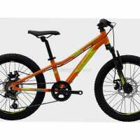 Polygon Relic 20″ Alloy Kids Bike